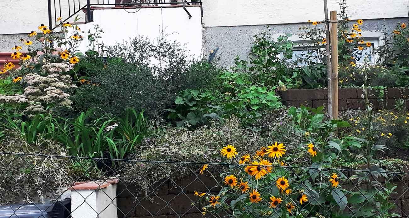 Garten Vorher Nachher Gartengestaltung Und Freiraumplanung